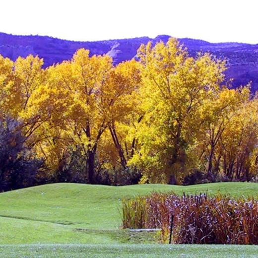 Adobe Creek National Golf Course