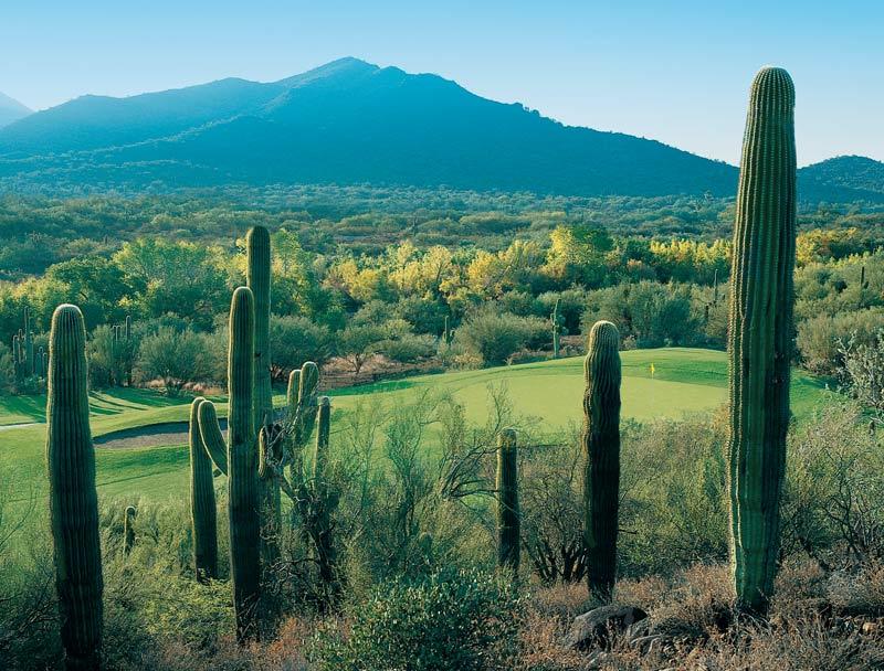 Rancho Manana Arizona Golf