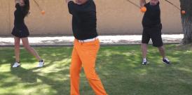 orange whip trainer cover