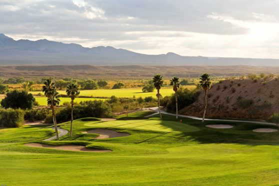 Play in the Nevada Open and Casablanca II Man this November!