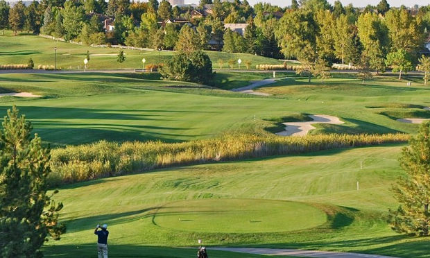 lone tree unlimited golf cover