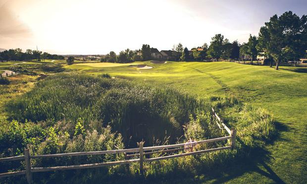 thorncreek golf