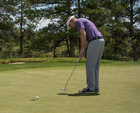 golftec_grid1.jpg